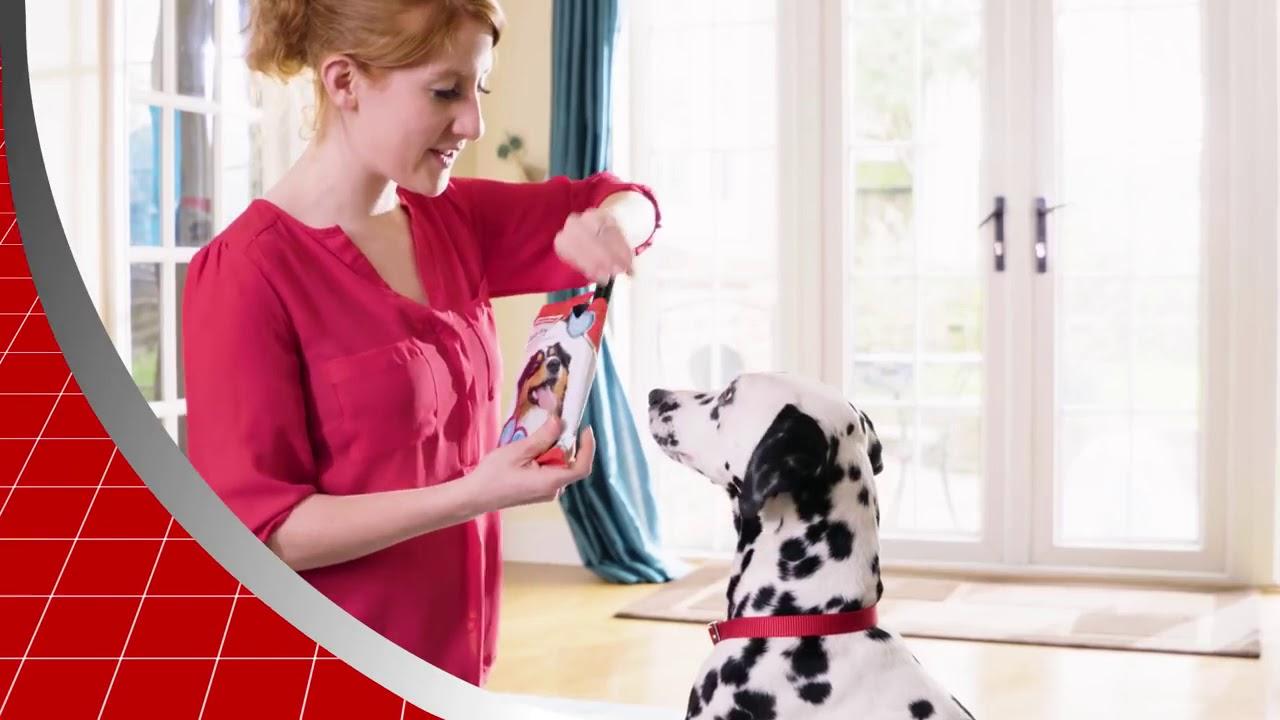 Snacks dentales para perros Beaphar Dental Sticks