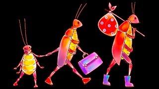 10 cách tự nhiên để thoát khỏi bọ chét
