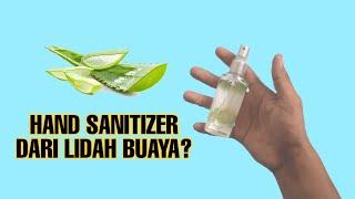 How to make hand sanitizer   diy