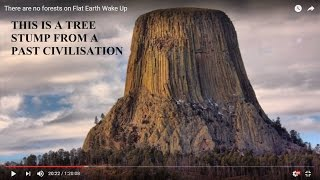 There are no forests on Flat Earth Wake Up (Mirrored)