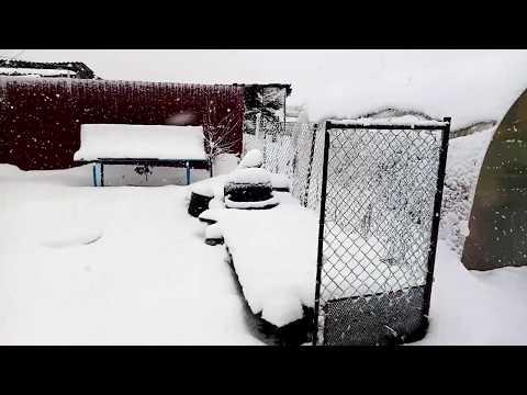 Здравствуй, зимушка-зима.