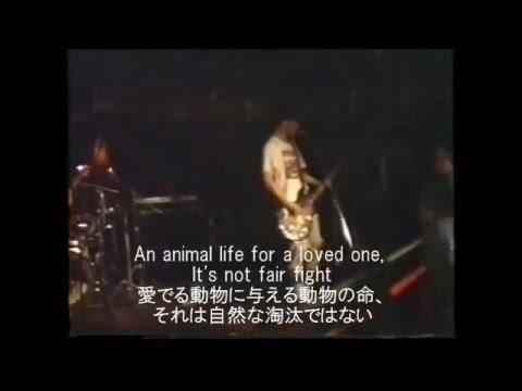 字幕付'88 ELECTRO HIPPIES