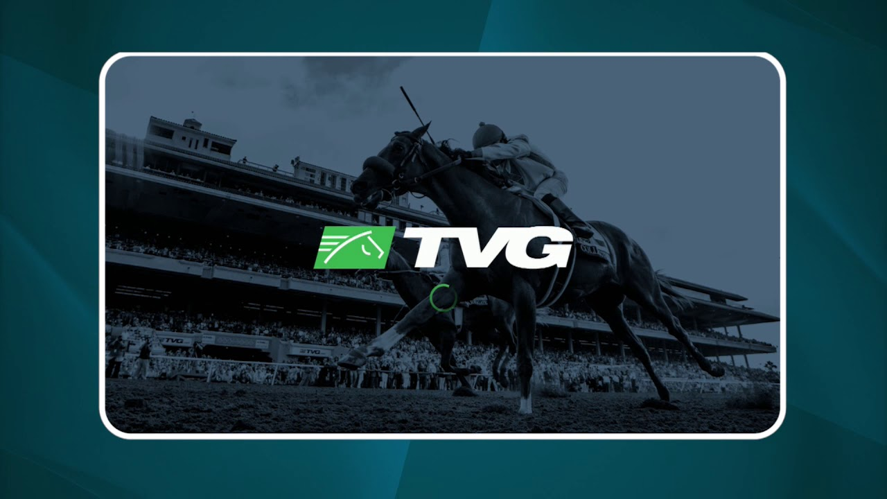 Watch TVG and TVG2 on your connected TV device