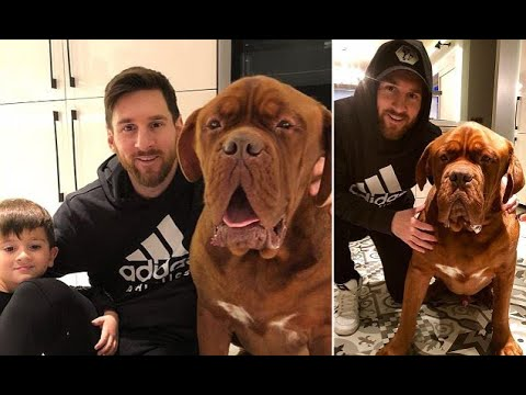 Barcelona star Lionel Messi relaxes at home with his dog
