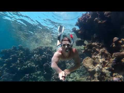 Treasuries of Red Sea: Snorkeling @ Naama Bay