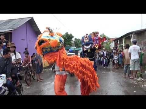 GOJIGO Singa Dangdut Megasari Live Lombang Bpk Castam