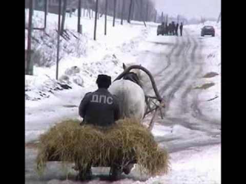 Анекдот про Москву и ГАИ, Самые смешные анекдоты на fun
