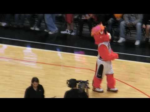 Benny The Bull DANCING