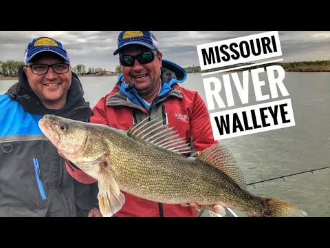 Spring Walleye Fishing On The Missouri River