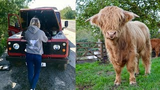 LAND ROVER BREAKS DOWN WHILE GETTING THE NEW HIGHLAND BULL