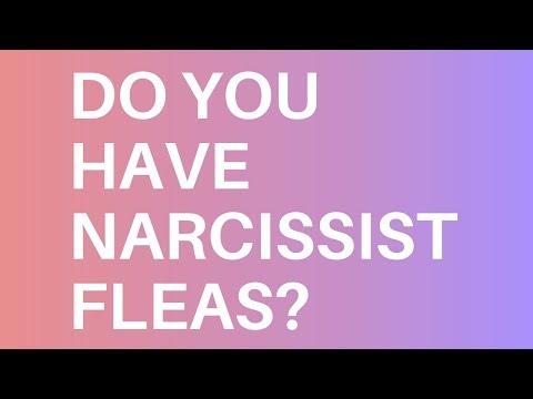 Narcissist Fleas