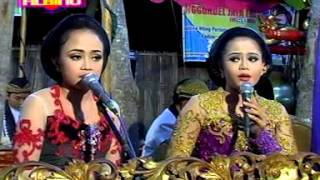 Bowo Kutut Manggung,palaran Lajeng Tolak Sengkolo Kroso Nyenyes Neng Ati