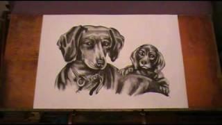 Видеоответ на песню Пропала собака - Лена Могучева