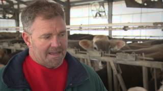 UW-Extension: Dairy Modernization in Wisconsin