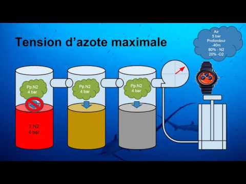E-learning : Eléments de calcul de Table pour Plongeur N4/GP