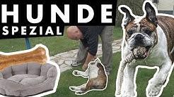 Hunde Spezial | Deffis Hackshow Staffel 02 / Episode 05 | Detlef Steves