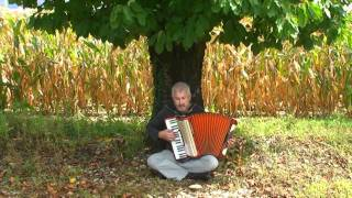 Yann Tiersen La Veillée - Sad song instrumental - French music accordion - Akkordeon accordeon