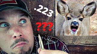 .223 For Deer?