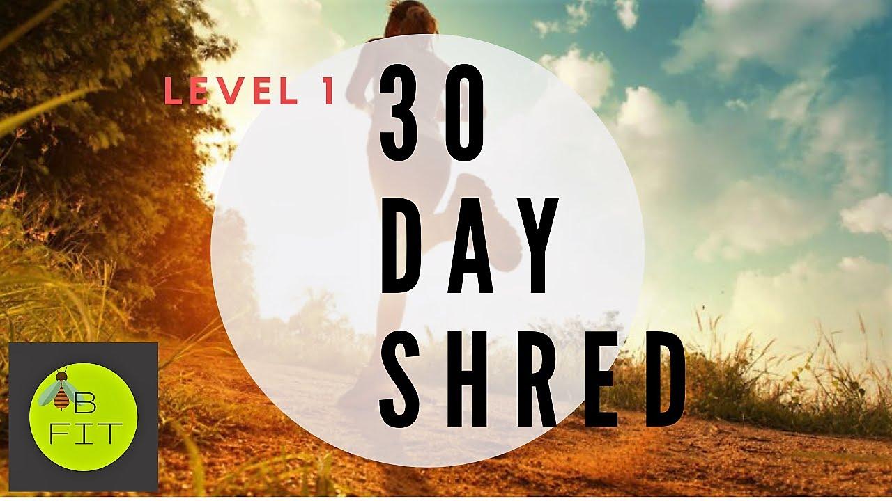 Shred Level 1