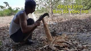 Làm chày giã đậu bằng cây chân bầu/phuong olwen vlogs