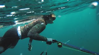 the WORST part about Spearfishing // Gulf of Mexico 2018