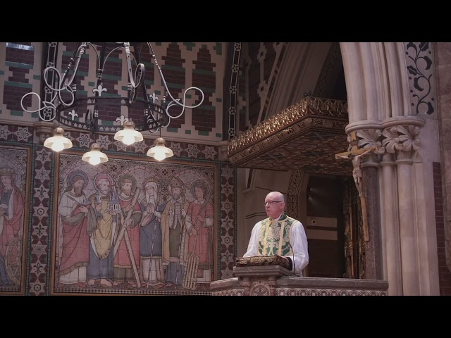 Sermon for Trinity 16
