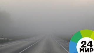 Романтический туман окутал Новосибирск - МИР 24