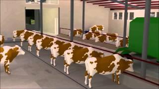 Hayvancılık hibe