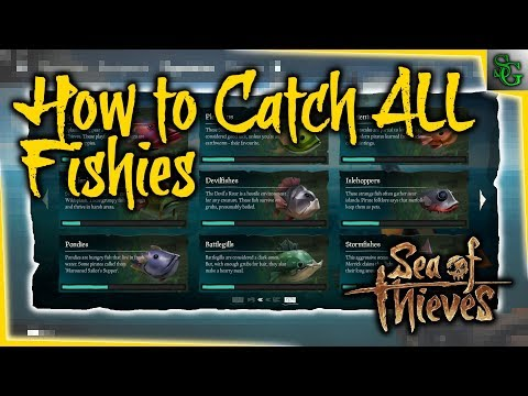 Sea Of Thieves - How To Catch All Of The Fish (Locations And Tips And Tricks)