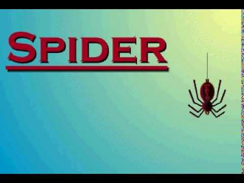 Microsoft Spider Solitare Sounds