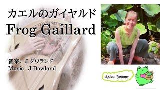 【ライアー】【 Lyre】指がからまりそうなダウランド, カエルのガイヤルド, The Frog Gaillard (Dowland)