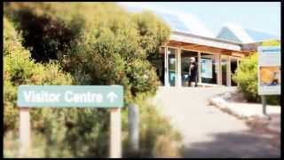 Download Stunning 2 day tour of Kangaroo Island with Sealink Tours MP3 song and Music Video