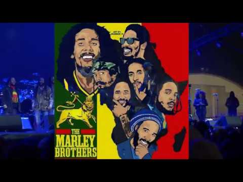 The Marley Brothers \\ EXODUS ft. Tom Morello \\ Kaya Fest '18