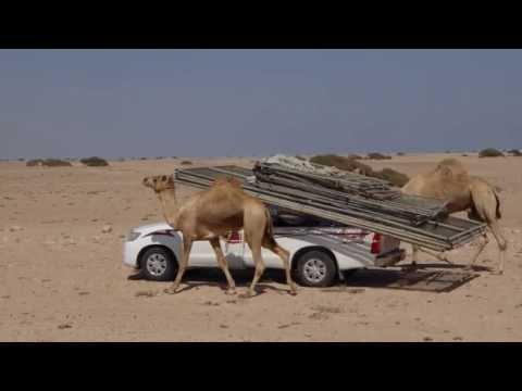 Tutto l'Oman