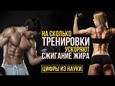 Жиросжигание (Липолиз) на Тренировке