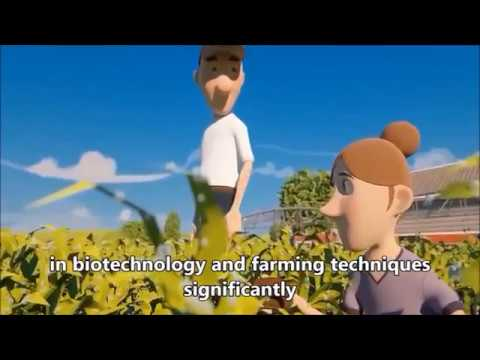 ERT 351 GROUP MINI PROJECT ON SUSTAINABILITY (GROUP 7: VEGETABLE PRODUCTION)