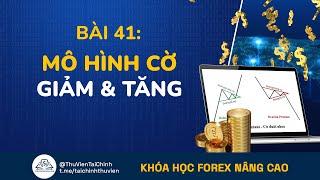 Bài 41: Giao Dịch Forex Với Mô Hình Cờ Giảm Giá Và  Mô Hình Cờ Tăng Giá | Đầu Tư Forex Nâng Cao
