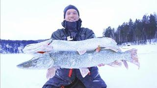ДА ЧТО ТУТ ЗА ЩУКИ ТАКИЕ!!! СОВСЕМ НЕ ПОДНИМАЮТСЯ! Зимняя рыбалка на щук и окуней СИБИРИЯ