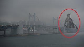 5 Godzilla Xuất Hiện Ngoài Đời Thật Vô Tình Được Camera Quay Lại || 5 Godzilla Caught On Camera