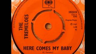 The Tremeloes     Here comes my baby. 1967.