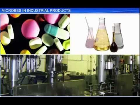 CBSE Class 12 Biology, Microbes In Human Welfare – 2, Microbes In Industrial Products thumbnail
