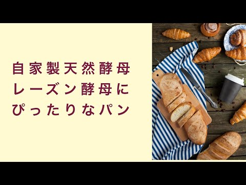 【自家製天然酵母】レーズン酵母で作るパンはどんなパンがぴったりなの? フルーツ酵母 自家製天然酵母 パン教室 教室開業 大阪 奈良 東京 名古屋 オンライン講座