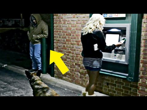 Man Blocks Woman At ATM, Doesn t Know Dog Is A Cop |