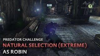 Batman: Arkham City - Natขral Selection (Extreme) [as Robin] - Predator Challenge