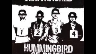 "Hummingbird of Death - Split 6"" w/ Sidetracked [2010]"