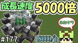 【ふたクラ】#177 成長速度5000倍!?効率がやばすぎるサボテン畑!【マインクラフト】【マイクラ実況】