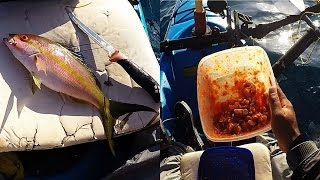 key west kayak cooking yellowtail ceviche quick recipe and a snapper limit