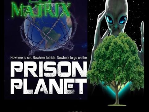 Download Youtube: OCCULT Origin of No Forests On FLAT EARTH | Annunaki, Matrix, Prison Planet