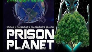 OCCULT Origin of No Forests On FLAT EARTH | Annunaki, Matrix, Prison Planet