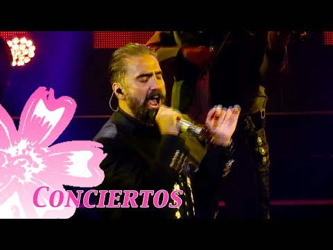 🍭  Alejandro Fernández bailando muy raro